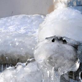 Udsigt til hård frost – hvad skal du være opmærksom på?