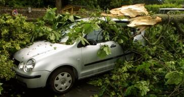 Flere storme på vej – og med kraftigere styrke