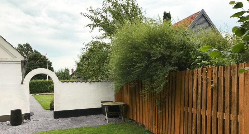 Beskæring af naboens træer
