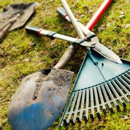 7 ting i haven du kan gøre klar til foråret allerede nu!