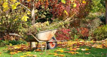 Efterår i haven – 9 gode haveprojekter
