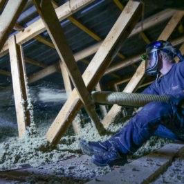 Lad spurvene fryse: Sådan sikrer du husets vintervarme